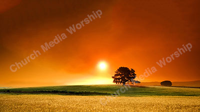 Sunset Wheat V2 Christian Worship Background. High quality worship images for use to spread the Gospel and enhance the worship experience.